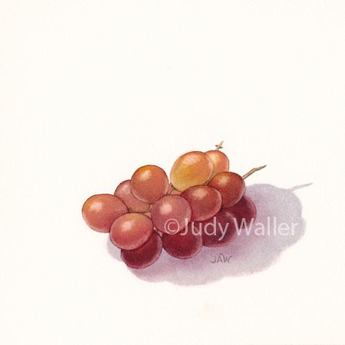 jwaller_grapes